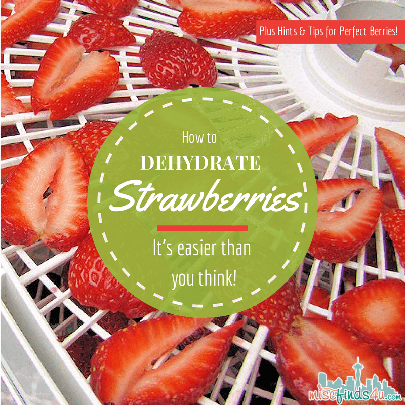 How to Dehydrate Strawberries - Dry to perfection