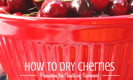 How to Dehydrate Cherries: Dry Your Own Whole Fruit