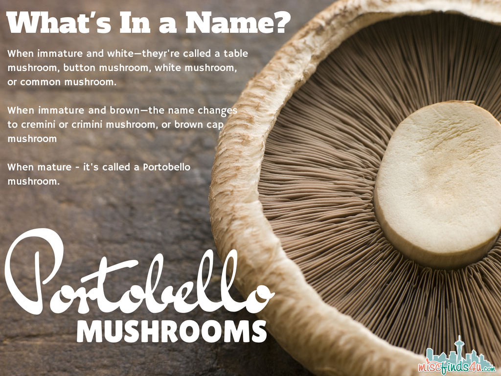 Portobello Mushroom Recipes - plus what's the difference between a white mushroom and cremini