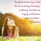 Quote: A Perfect Summer Day