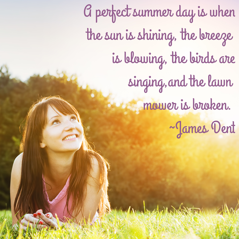 Quote - A perfect summer day is when the sun is shining, the breeze is blowing, the birds are singing, and the lawn mower is broken. ~James Dent