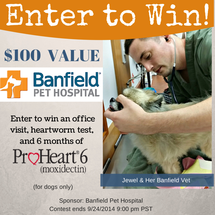 Banfield Giveaway