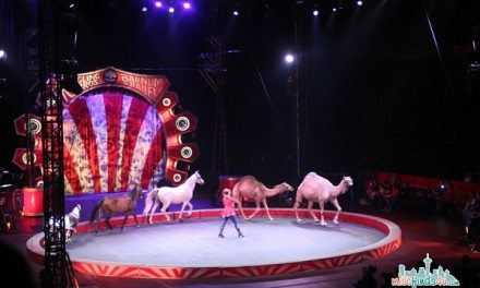 Things To Do With Kids In Seattle: Go To The Circus #Seattle