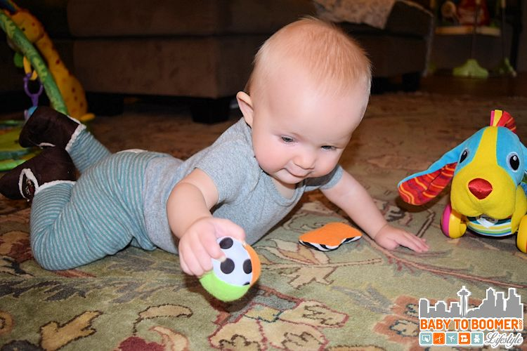 Infant Toys: Lamaze Pippin the Push Along Pup - ad