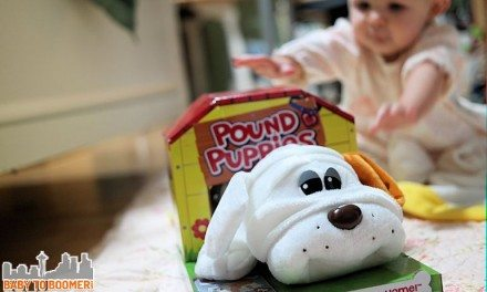 Pound Puppies – Plush Dogs You Adopt!