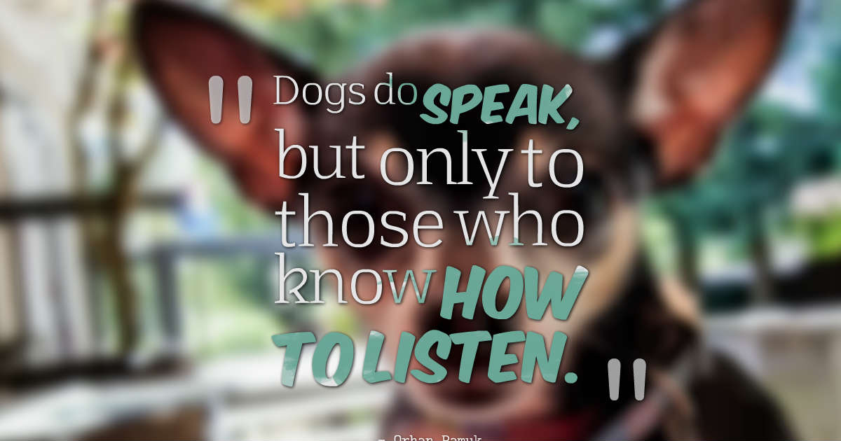 Dog Quotes: Because They Mean Everything To Us -
