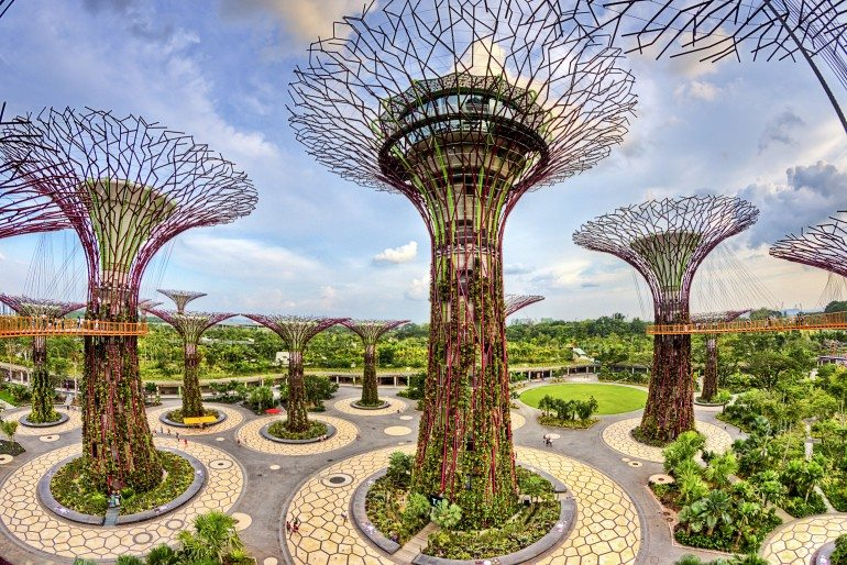 Places of interest and attractions at Marina Bay Singapore featuring nature