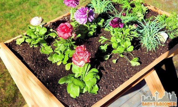 Deck Gardens: Gardening that Saves Water and Your Back