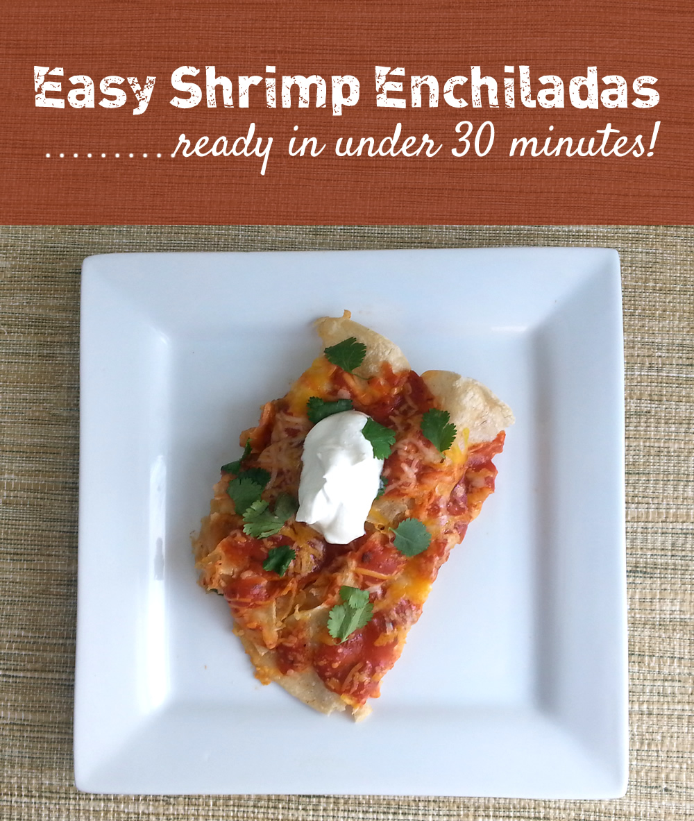 easy-shrimp-enchiladas