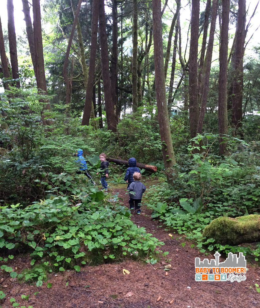 7 Things To Do On The Olympic Peninsula With Kids - Go exploring in Olympic National Park