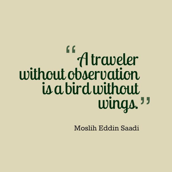 Travel Quotes - Like a Bird without Wings
