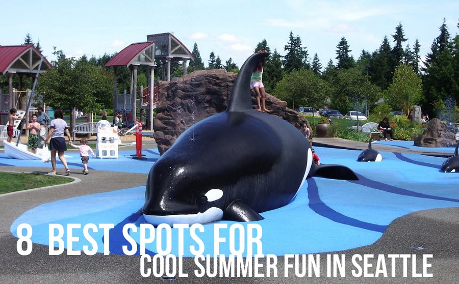 8 best spots for cool seattle fun