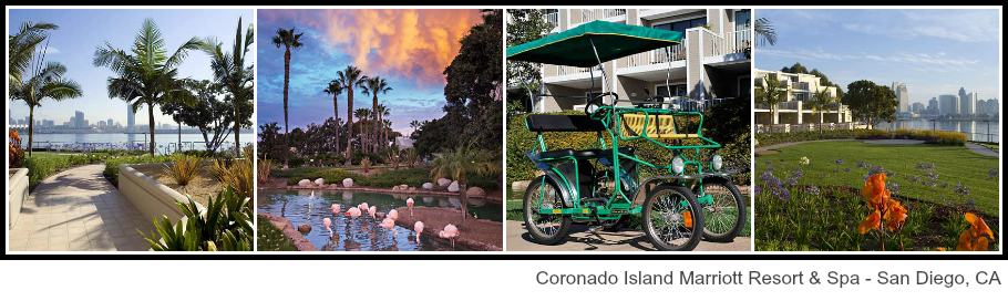 Coronado Island Marriott Resort Spa Outdoor Amenities - The Perfect Summer Vacation Just Got More Affordable  #CelebrateSummer ad