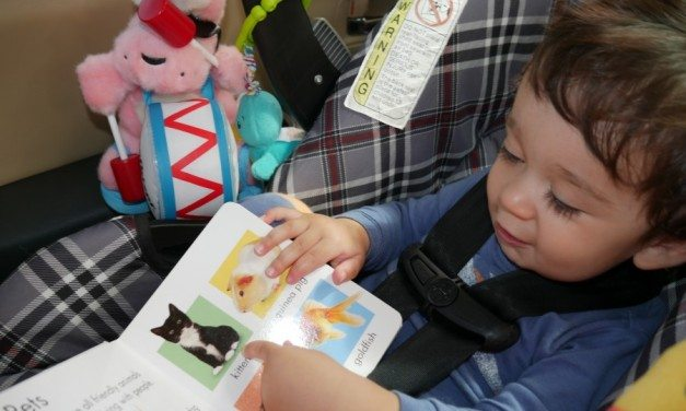 Scholastic Summer Reading Fun with the Energizer Bunny #GIVEAWAY