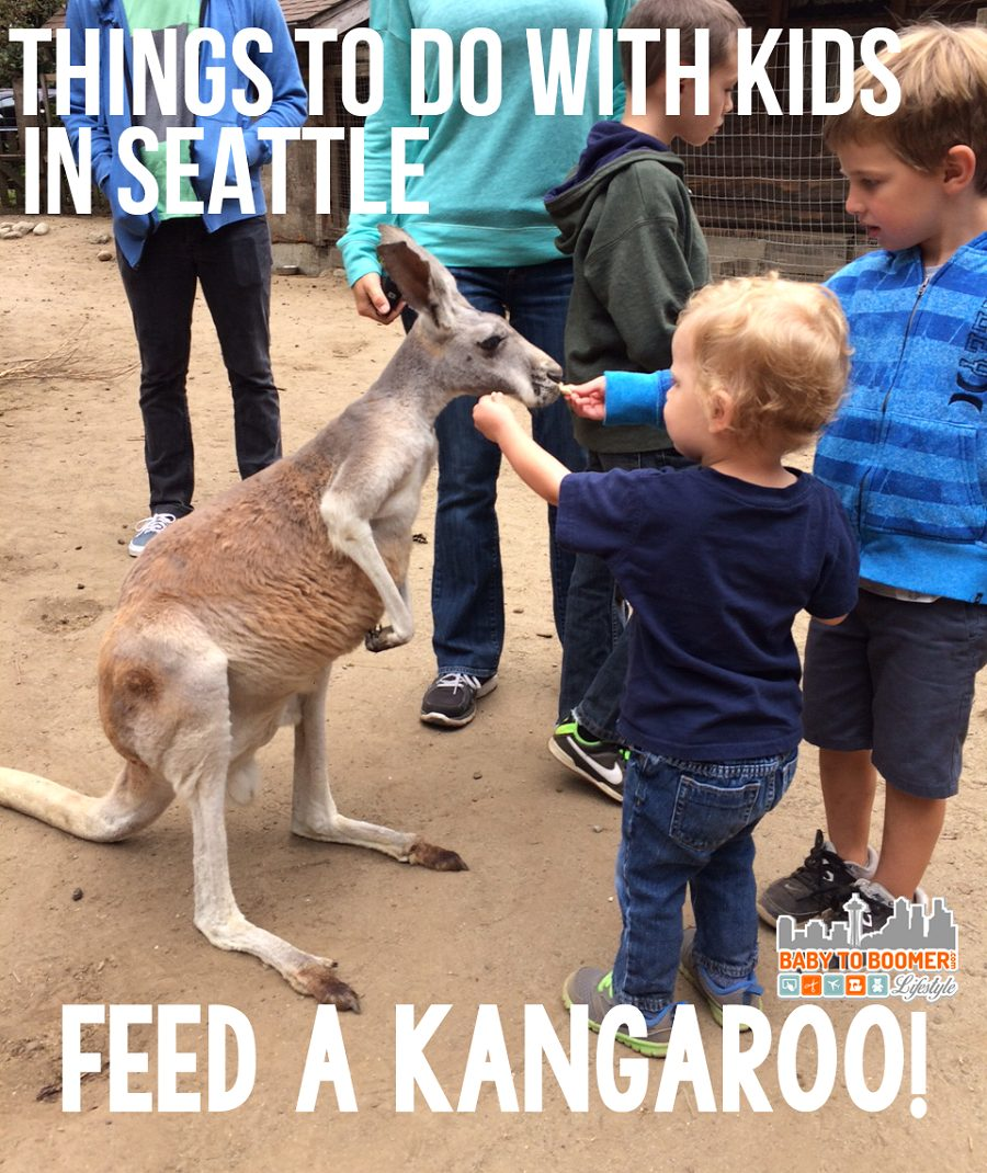 Outback Kangaroo Farm -- pet and feed kangaroos! Things To Do With Kids In Seattle: Pet A Kangaroo!