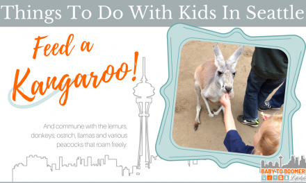 Things To Do With Kids In Seattle: Feed a Kangaroo!