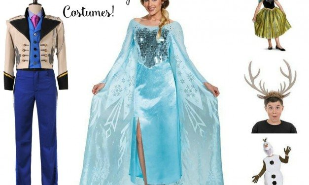 2017 FROZEN Halloween Costumes: Adult, Teen, & Toddler Sizes