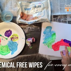 Water Wipes: Natural Baby Wipes For Moms On The Go