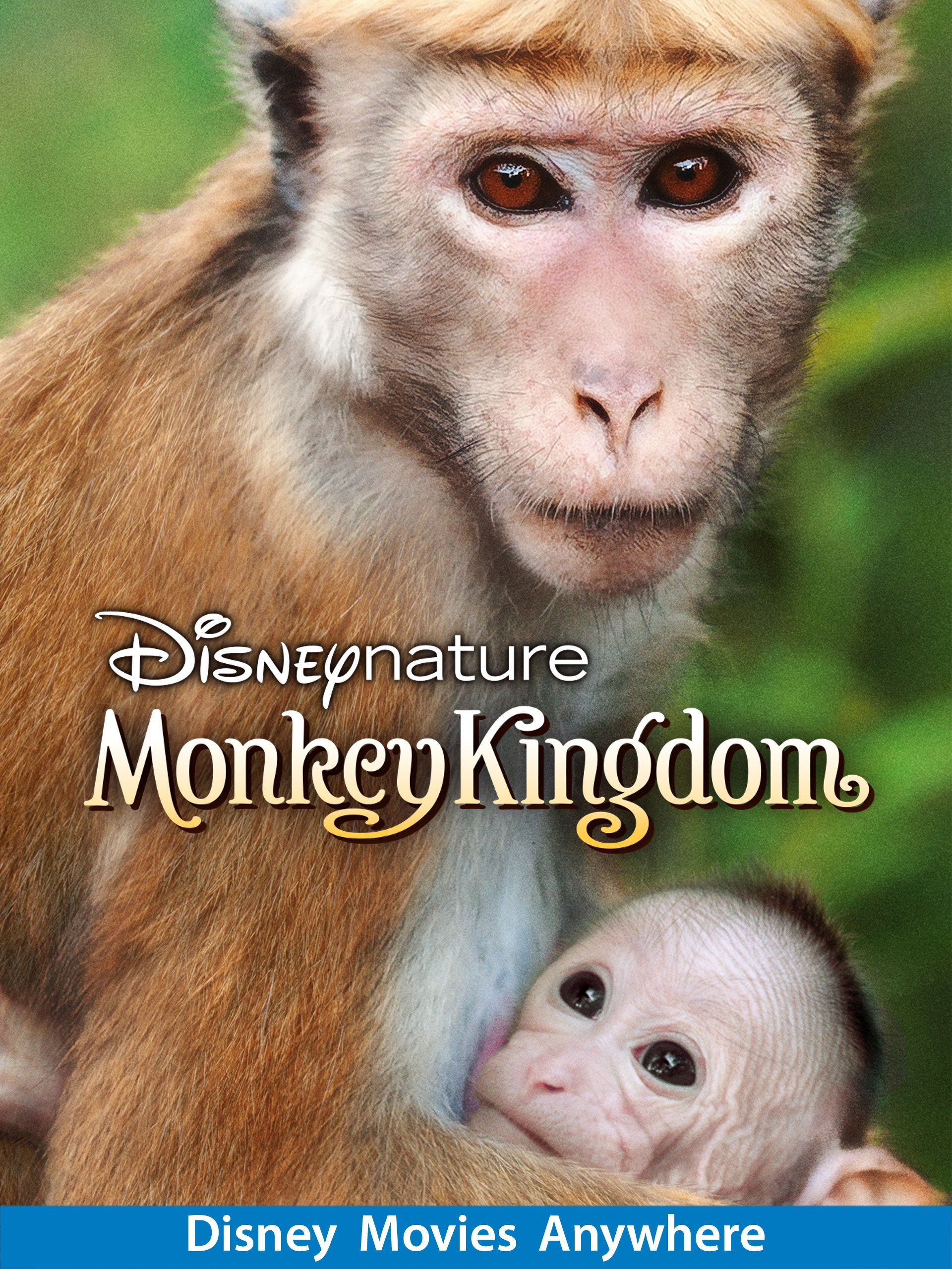 Monkey Kingdom: Family-Friendly Nature Film From Disneynature ad