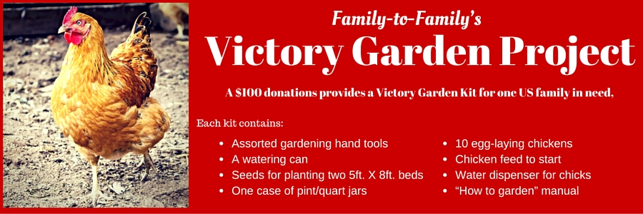 Family to Family Victory Garden Project - Donate $100 to provide chickens and seeds for a family in the US
