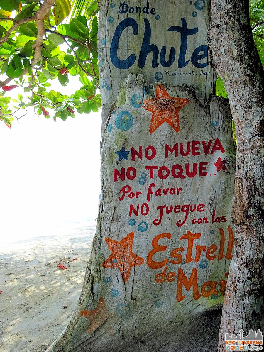 Panama - Bocas Del Toro - Playa Estrella Tree