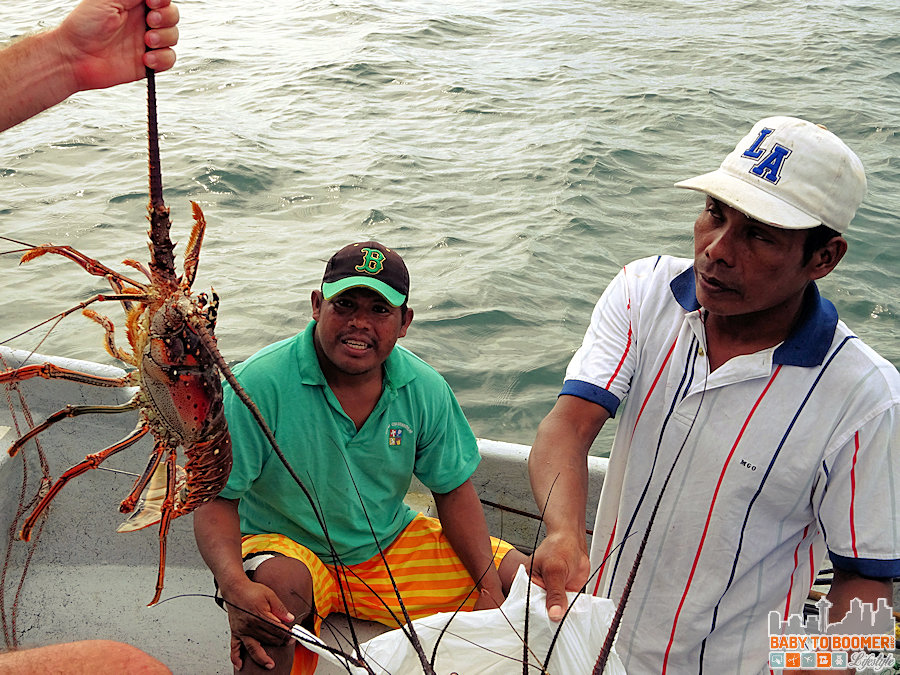 Panama - Cosmic Crab Fisherman Lobster