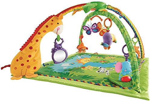 Baby Products Expert Kathleen Tomes Shares the Five Best Baby Playmats - Rainforest™ Melodies & Lights Deluxe Gym™