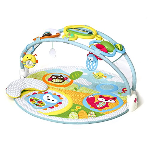 Baby Products Expert Kathleen Tomes Shares the Five Best Baby Playmats - Skip Hop Explore & More Amazing Arch™ Activity Gym