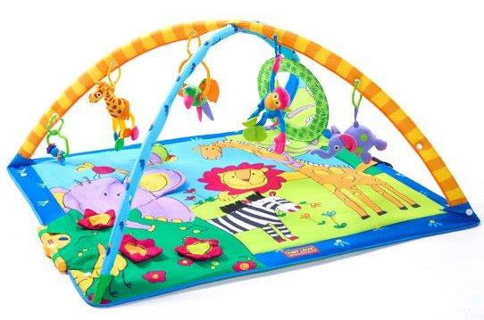 Baby Products Expert Kathleen Tomes Shares the Five Best Baby Playmats - Tiny Love Gymini Super Deluxe