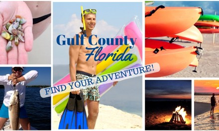 Gulf County Florida: Find Your Adventure!