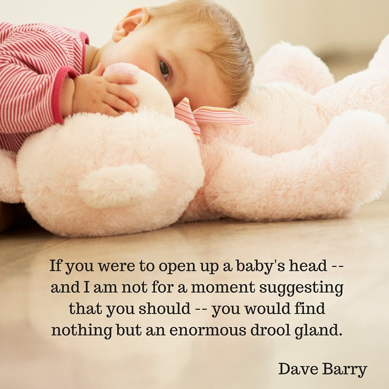 Quote - Dave Barry - Baby Drool Gland