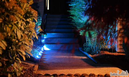 Update Your Landscaping in Five Minutes by Adding Light! #LIGHTIFY