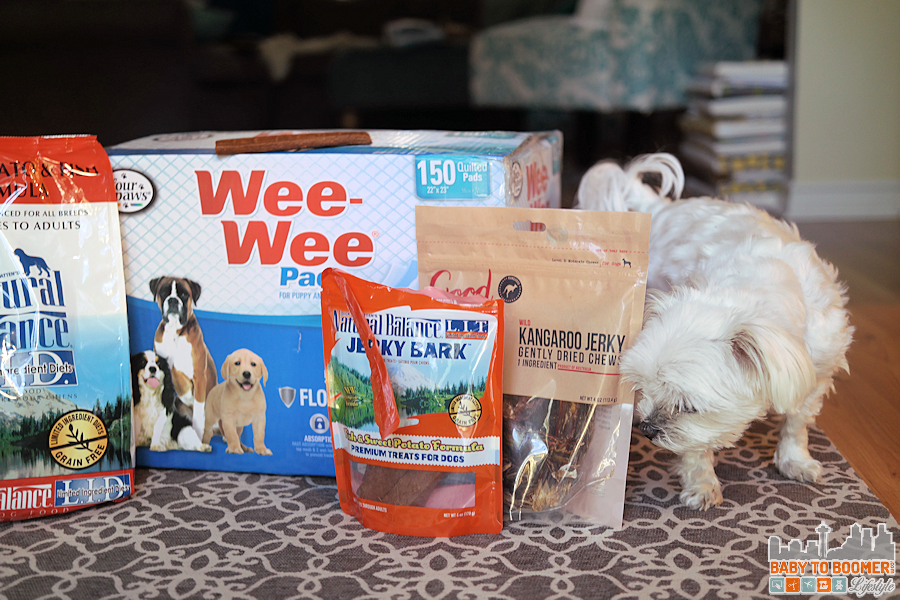 Petco Home Delivery - Pet Incontinence Tips - #PetcoDelivers #ad