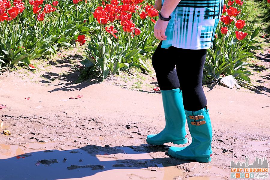 ROOZENGAARDE Tulip Farms - Chooka Boots - Spring and Fall 2016 Boot Trends: Western and Chooka Boots #TulipBoots ad
