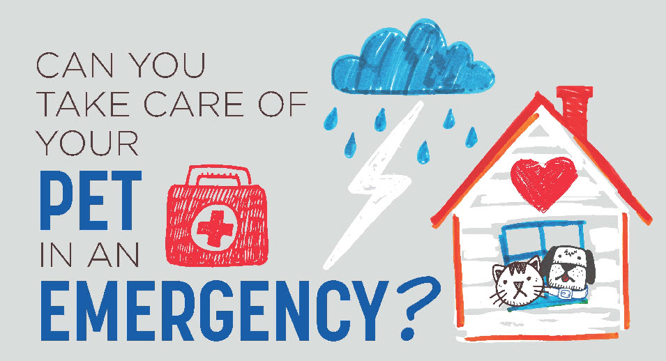 Click to download the Hill's Pet Emergency Go-Kit List - use it to assemble yours or share it to help other pet parents prepare for their animals.