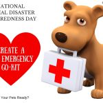 National Animal Disaster Preparedness Day: Are Your Pets Ready? #PetPrepared