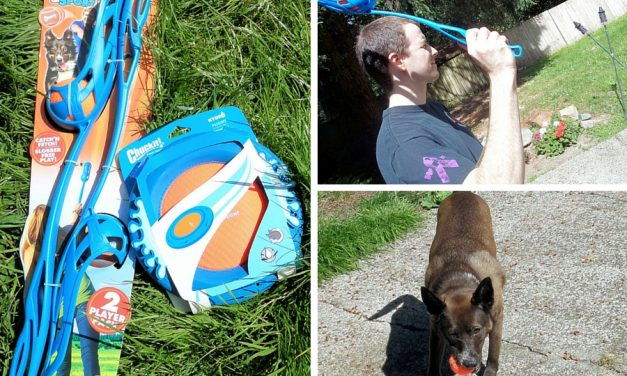 Chuckit Sport and Hydro Toys – Get Your Pup Outside!