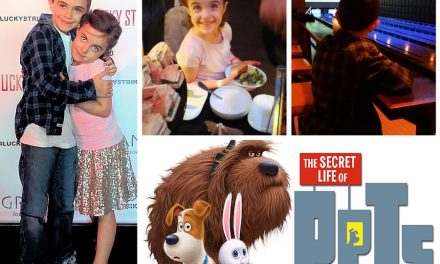 The Secret Life of Pets Family-Friendly Animated Comedy #XFINITYHomePets #THESECRETLIFEOFPETS