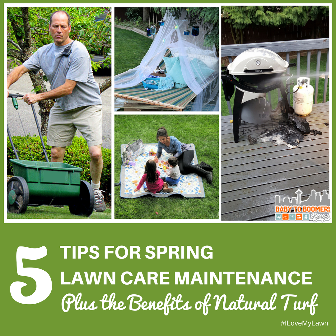 5 Tips for Spring Lawn Care Maintenance Plus the Benefits ...