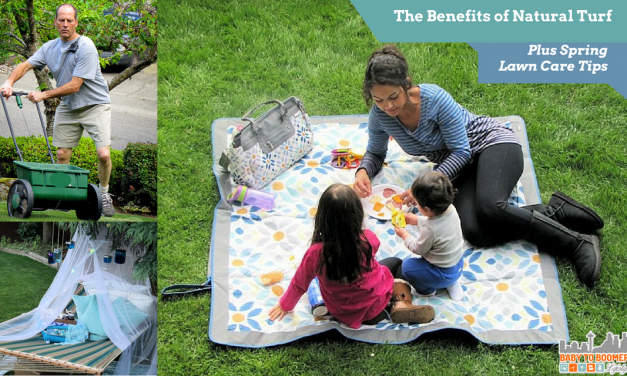 5 Tips for Spring Lawn Care Maintenance Plus the Benefits of Natural Turf #ILoveMyLawn