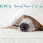 Get the FREEASPCA Animal Poison Control Center App