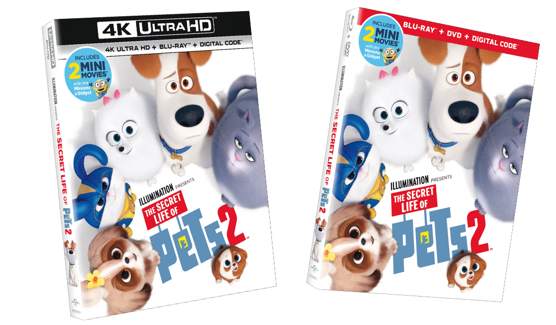The Secret Life of Pets 2 Available on Home Video - DVD, Blu-Ray & Digital