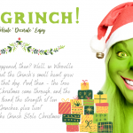 The Best of the Grinch!  2020 Gift Guide
