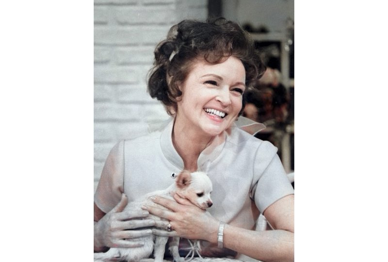Betty White's Pet Set 50th-Anniversary DVD Release aff